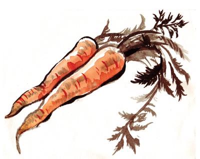 gt_carrot