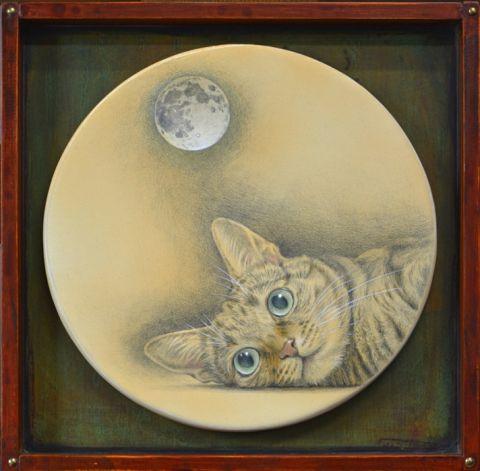 月見る猫はなに想う